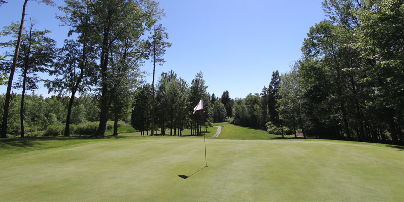 Photo of Par 3 Hole 5 at Tamarack Golf Club in Oswego, NY.