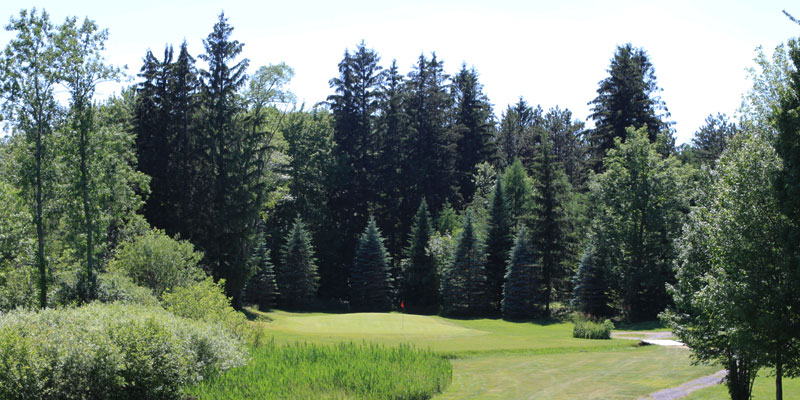 Photo of Par 4 Hole 4 at Tamarack Golf Club in Oswego, NY.
